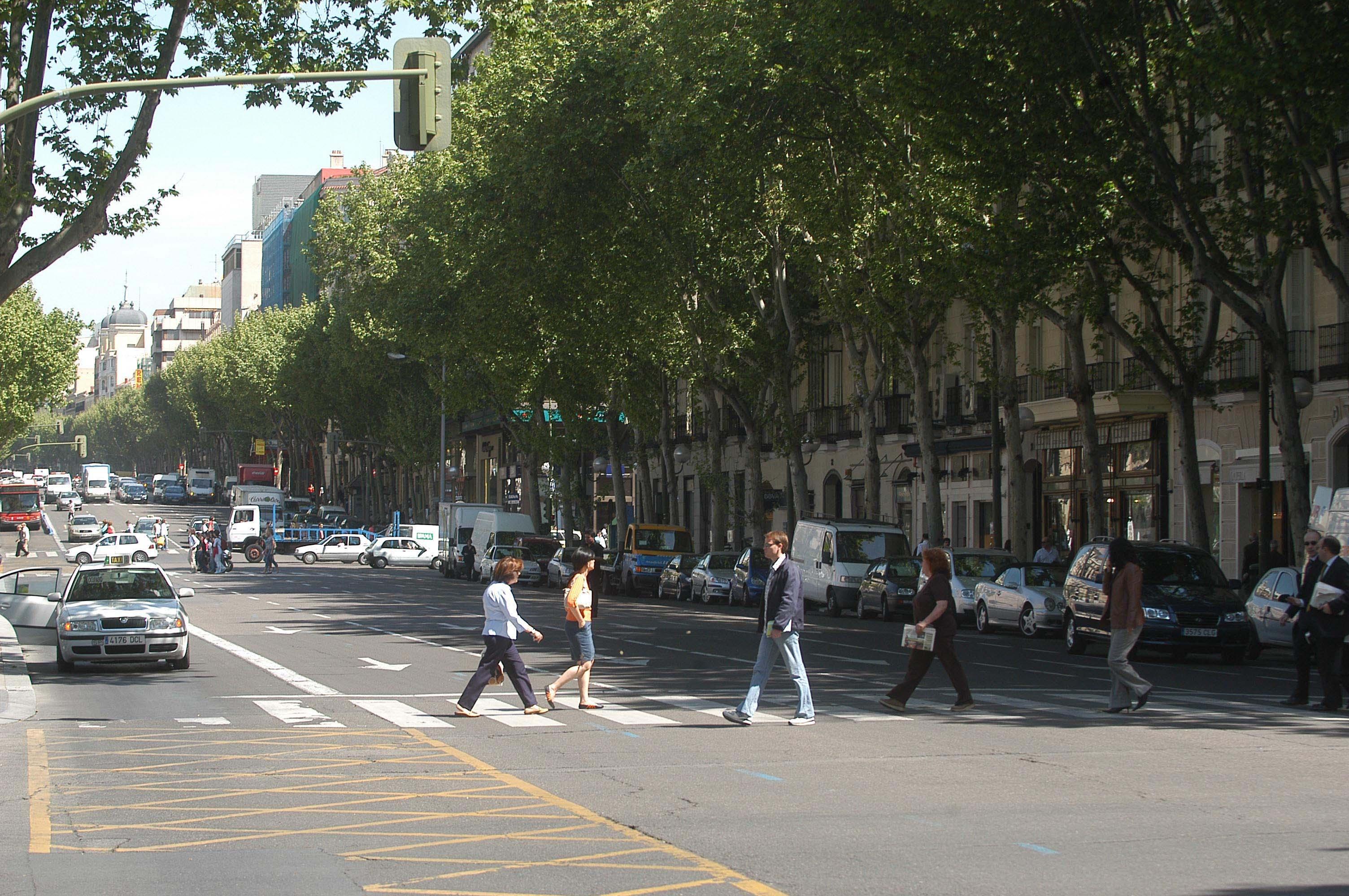 Remodelaci n de la calle serrano ayuntamiento de madrid - Calle serrano 55 madrid ...