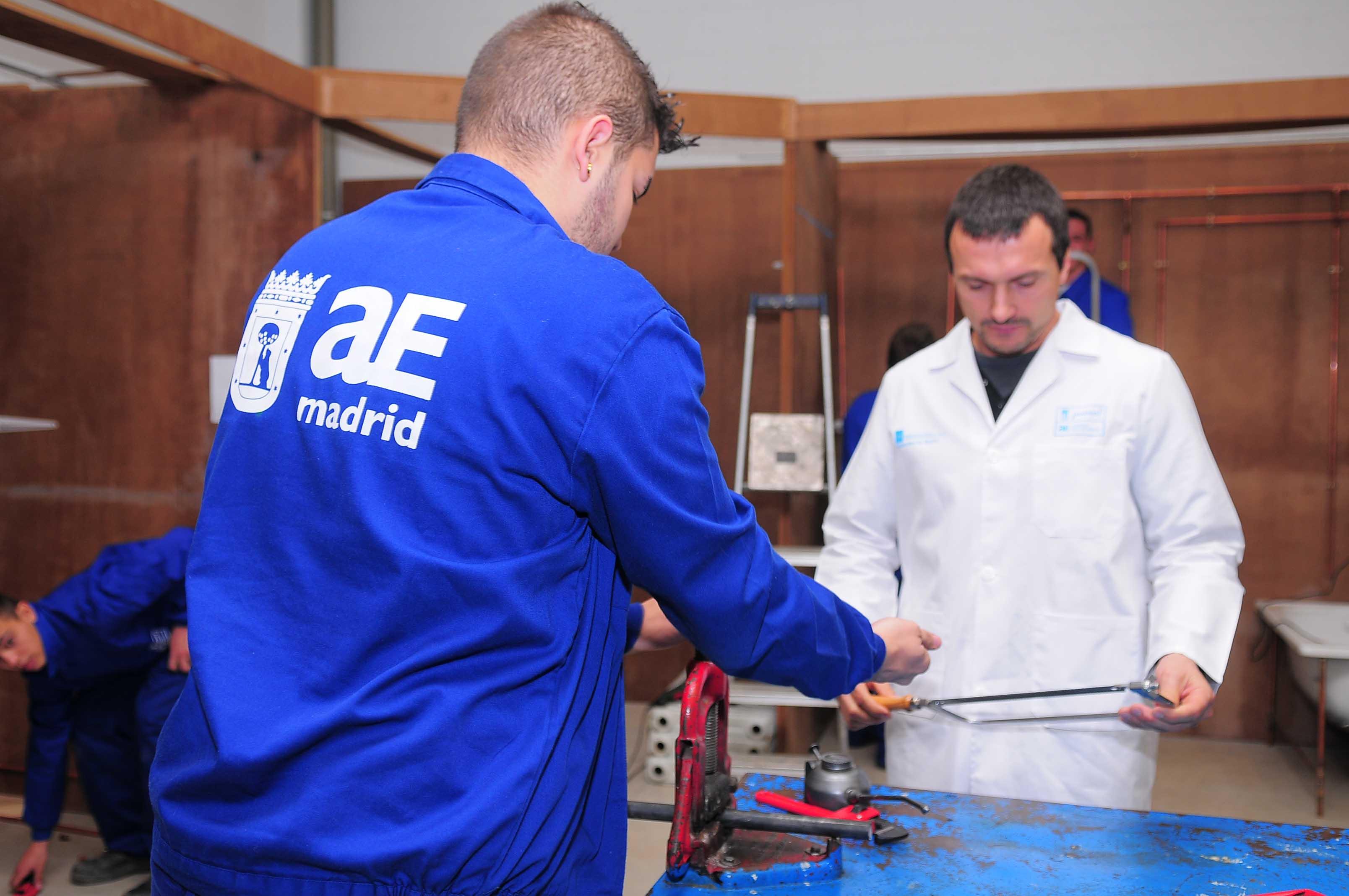 La agencia para el empleo sello de excelencia europeo for Agencia de empleo madrid
