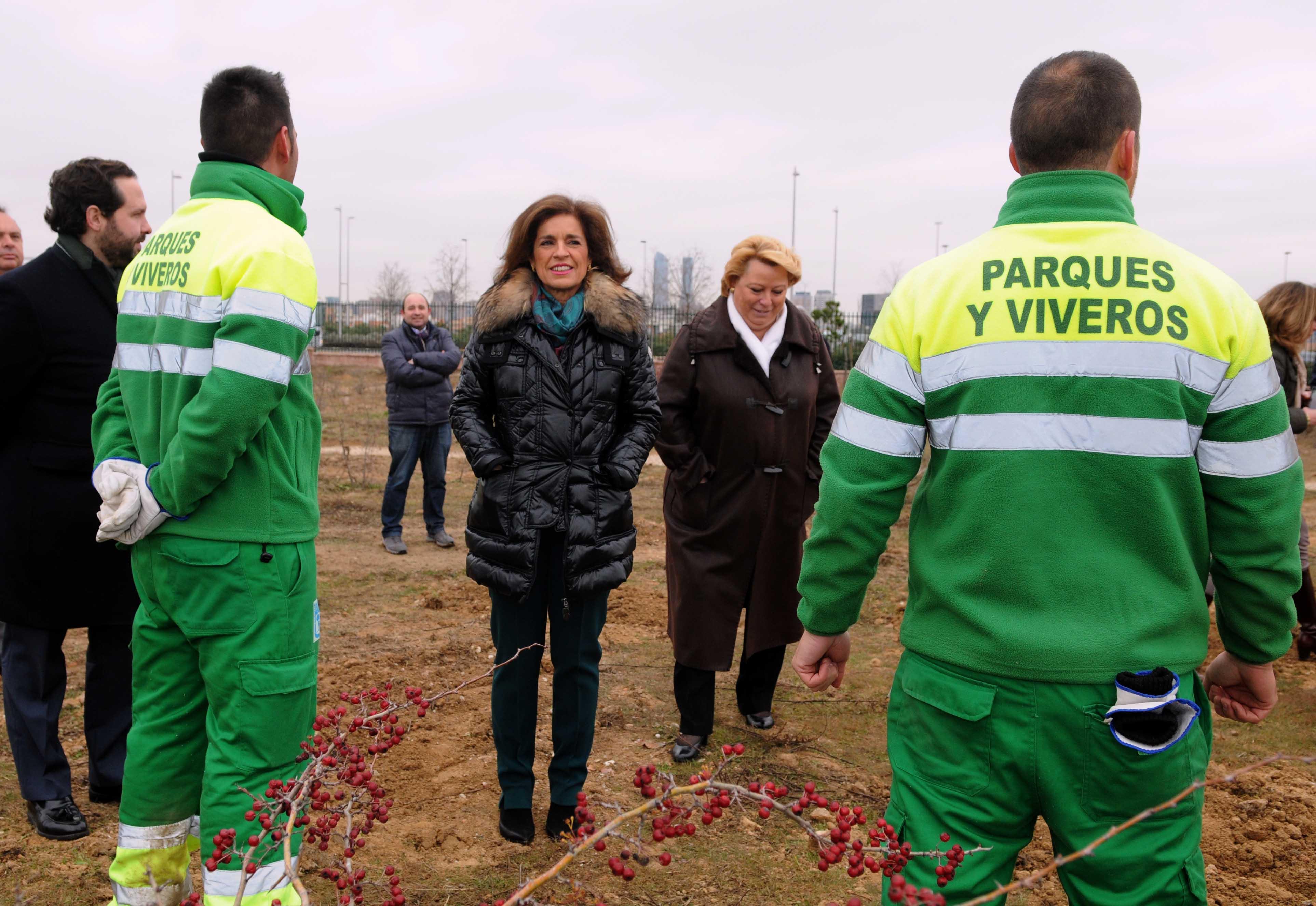 Se necesita jardinero madrid best excellent reformas integrales empresas de limpieza de - Trabajo jardinero madrid ...